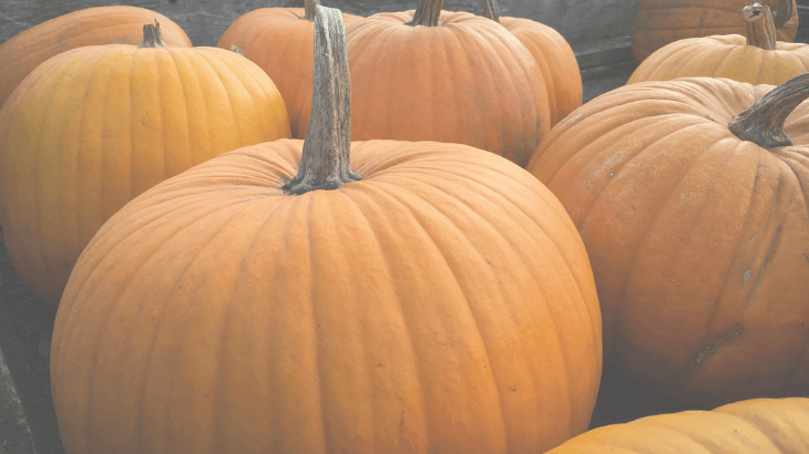 Best pumpkin lactation recipes for boosting milk supply